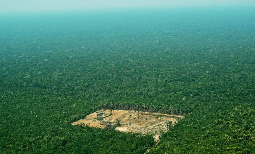 Apocalipsis en la Amazonia