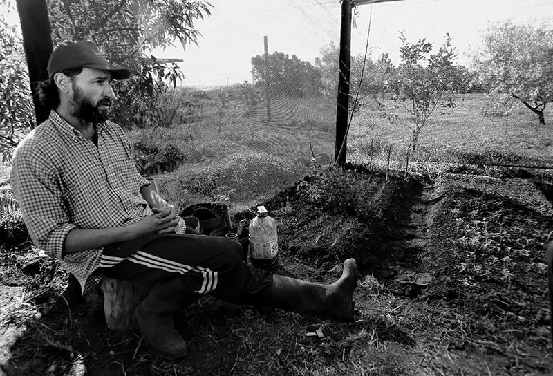 César Vega, candidato presidencial del Partido Ecologista Radical e Intransigente, en su chacra durante la entrevista con la diaria. / Foto: Pedro Rincón Foto: