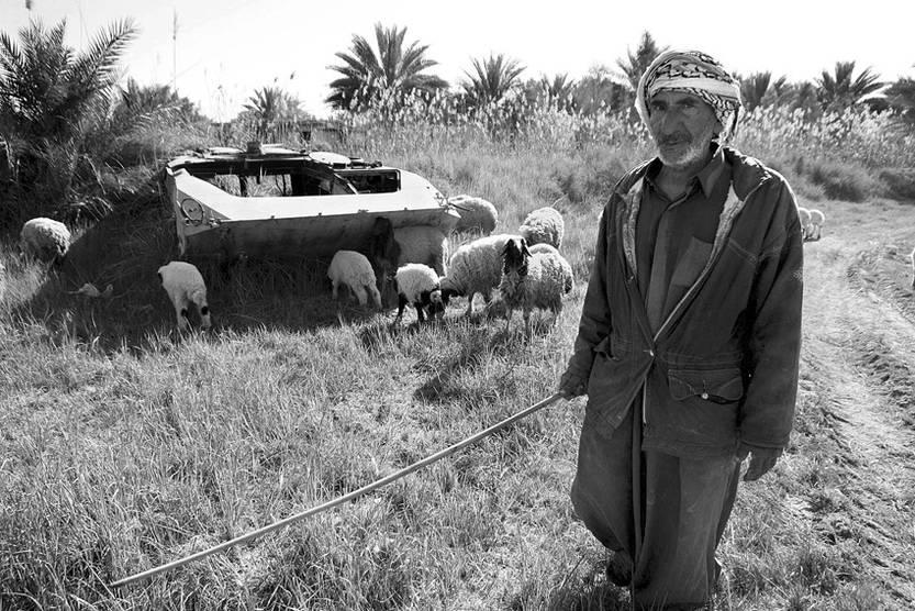 Un pastor junto a un tanque iraquí destruido y abandonado durante la guerra de 2003 con Estados Unidos, en Karbala, al sur de Irak. / foto: Alaa Al-Shemaree, Efe